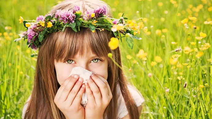 Do you get seasonal allergies? we look at the best naturopath essential oils to help